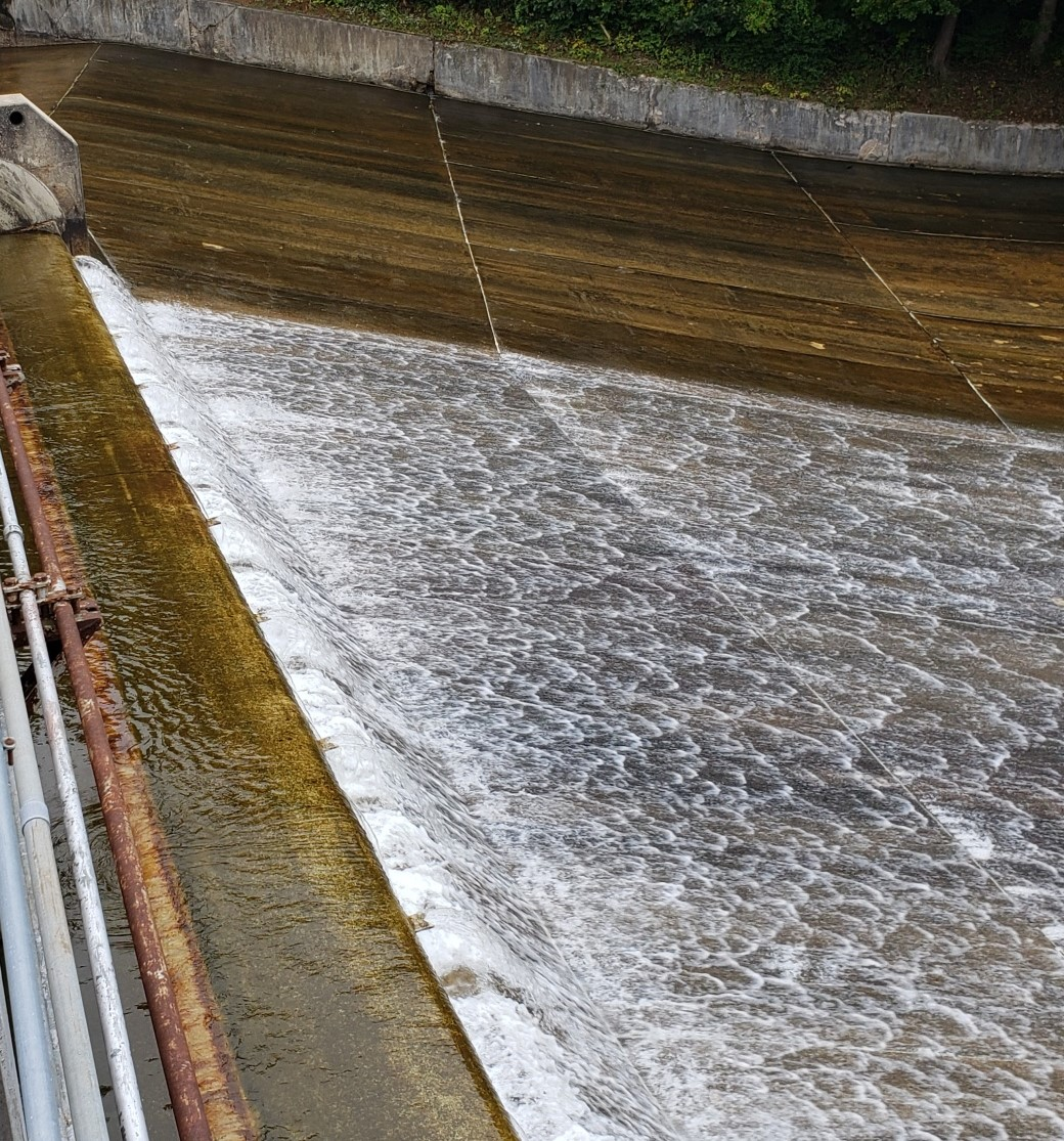 Lake Williams Lowering October 2021