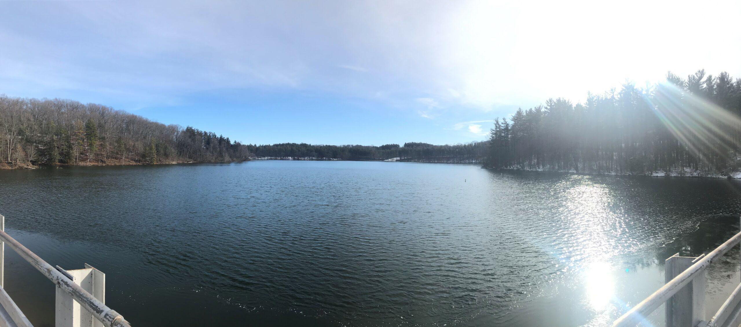 Lake Williams Panorama 01092020
