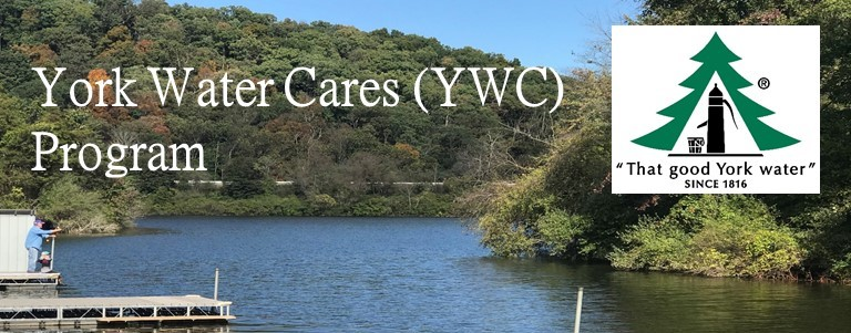YWC Program